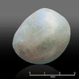 La plus ancienne perle trouvée dans une tombe du néolithique située sur le territoire de l'émirat Umm al-Qaywayn, aux Émirats arabes unis, 7500 ans.