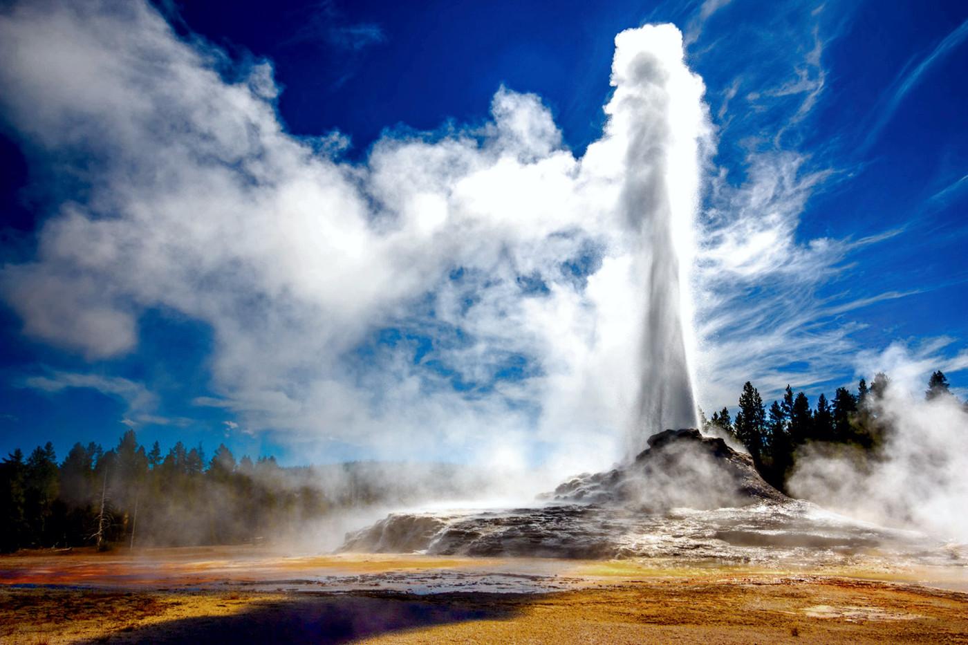 Yellowstone N.P.