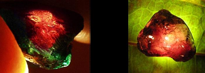 Tourmaline chromifère en lumière transmise.