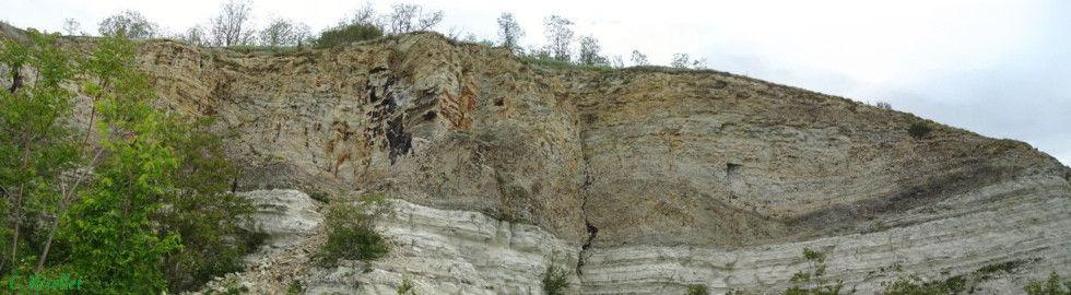 Calcaire bitumineux, carrière de Cournon d'Auvergne.