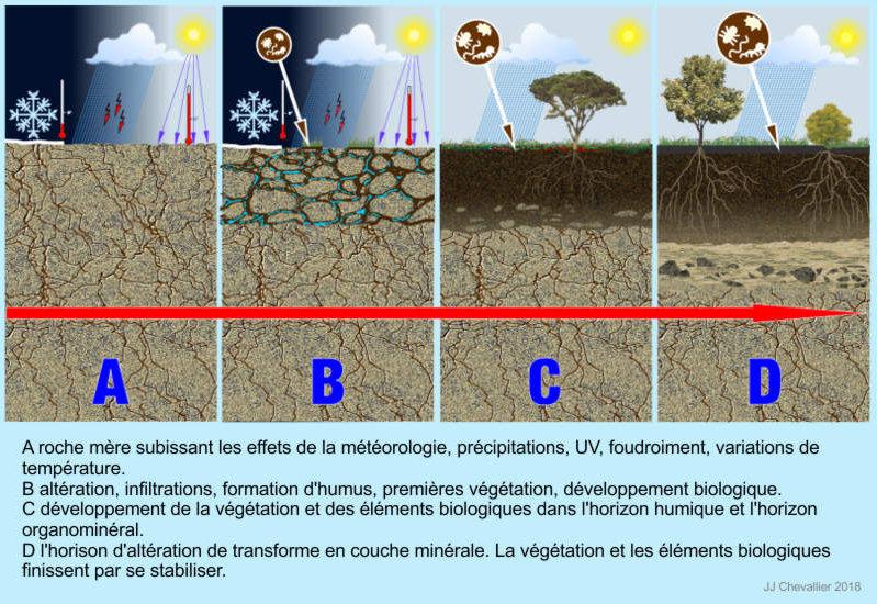 Formation du sol