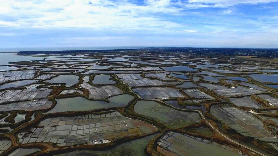 Vue aérienne des marais salants de la presqu'ile guérandaise.