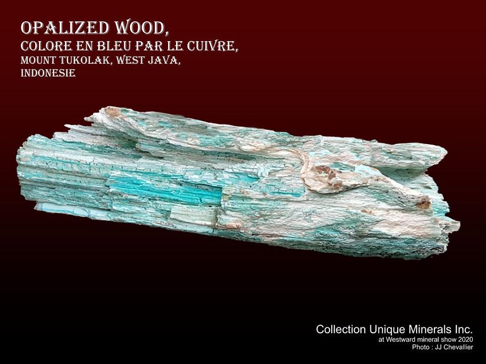 Opalized wood.