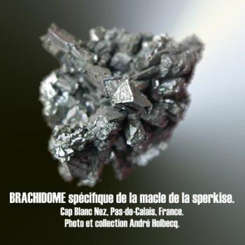Brachidome macle spécifique de la marcasite.
