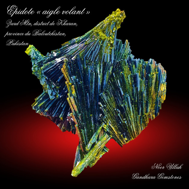 """2021-Mars - Epidote """"Aigle volant""""."""