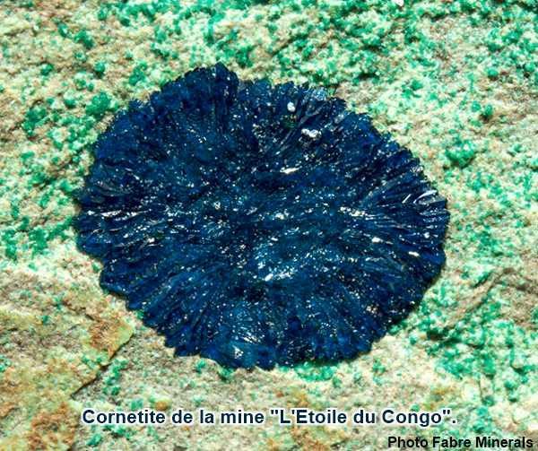 Cornetite de la mine L'Etoile du Congo.