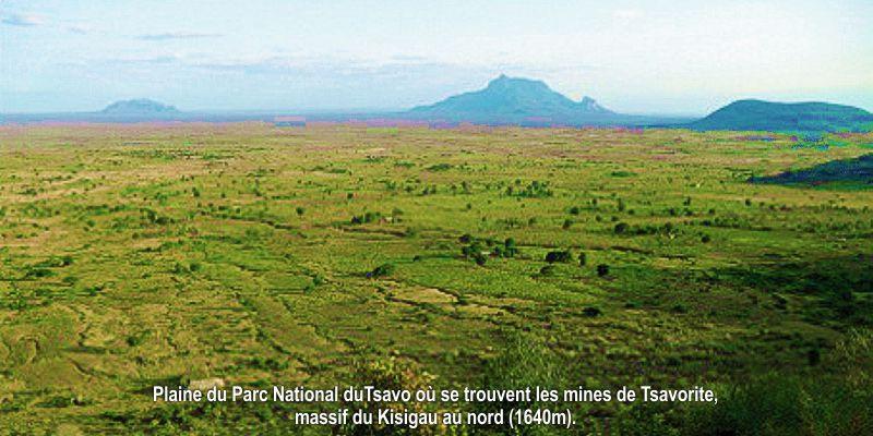 Parc_national_du_Tsavo_où_se_trouvent_le
