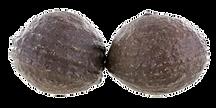 Moqui marbles du Nevada.