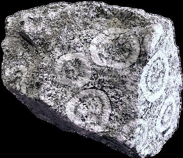 Diorite orbiculaire Santa Lucia di Talla, Corse.