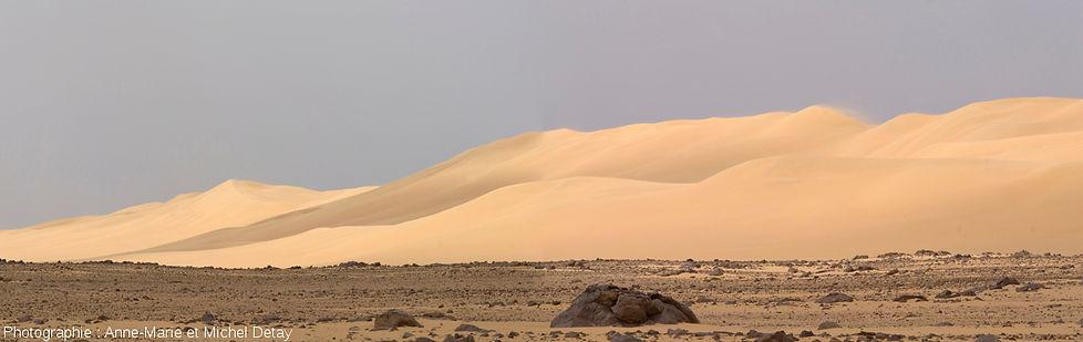 Couloir inter-dunaire parsemé de blocs rocheux de taille variable dans le désert libyque.