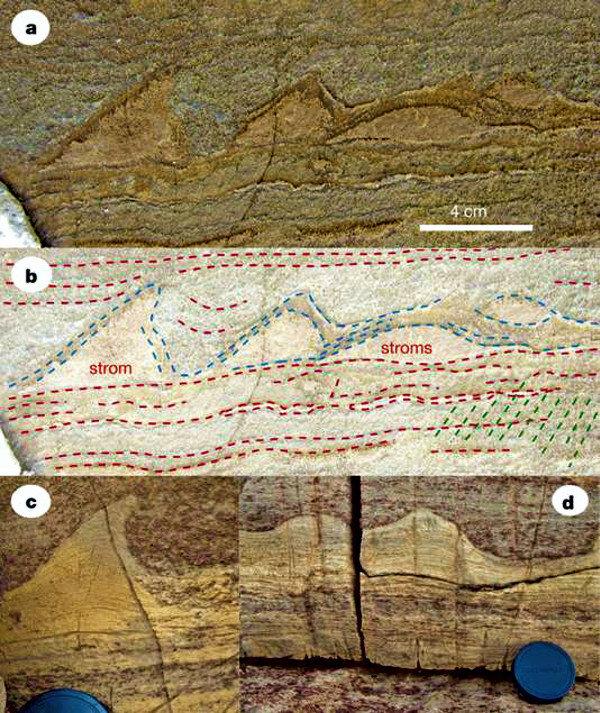 Stromatolites du Groenland et d'Australie, comparaison.