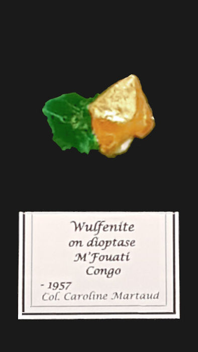 Wulfénite sur dioptase, M'Fouati, Congo coll. C Martaud