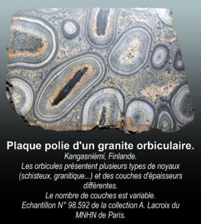 Plaque polie granite orbiculaire, Finlande.