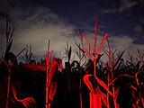 ghanon-paranormal-marston-moor-april-202