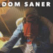 Dom Saner copy.jpg