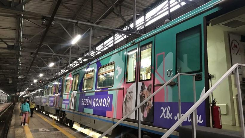 Специальный поезд «Хвосты и лапки», Москва (РОССИЯ)