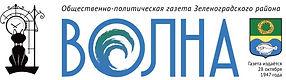 волна логотип.jpg