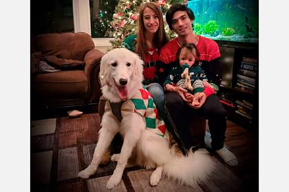5 номинант - Щенок пиренейской горной собаки по кличке Уиллоу (США)