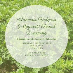Mugwort Sound Dreaming Ceremony