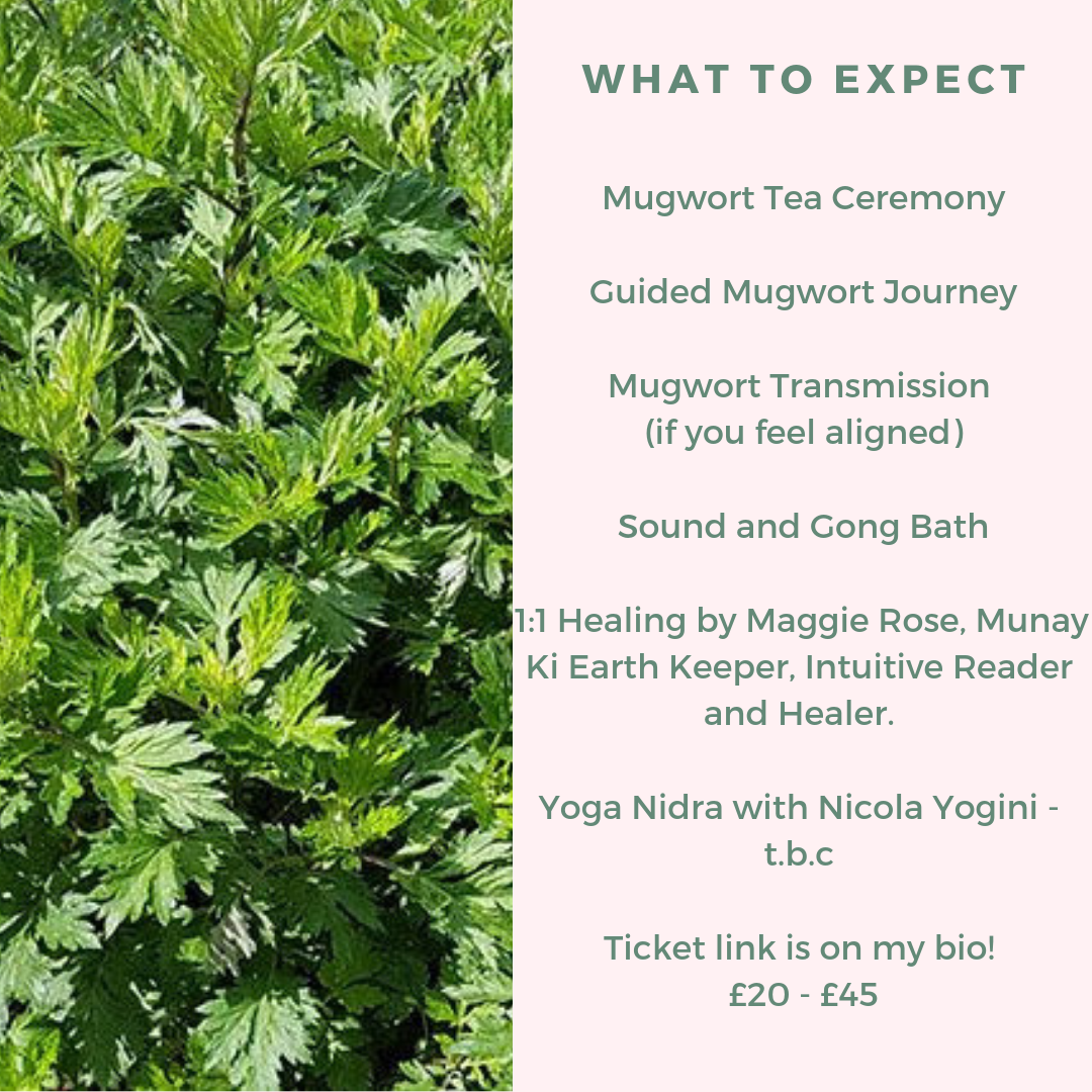 Artemisia Vulgaris Ceremony ~ Collaboration with Maggie Rose, Artist and Healer