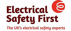 Electrical Safety First BM.png
