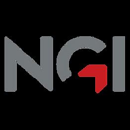 NGI_NTN-kvadrat.png