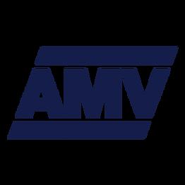AMV-NTN-kvdrat.png