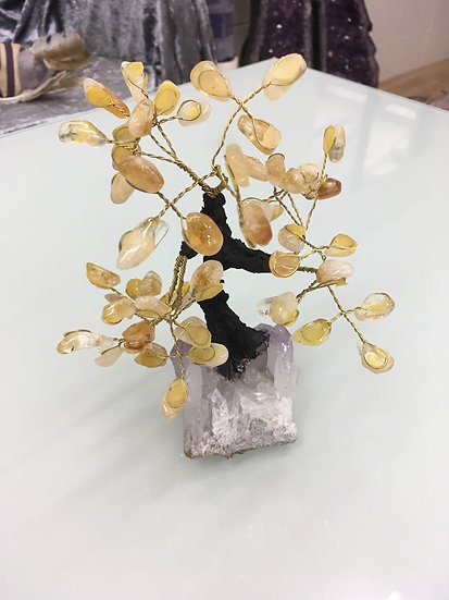 Gem Tree Citrine