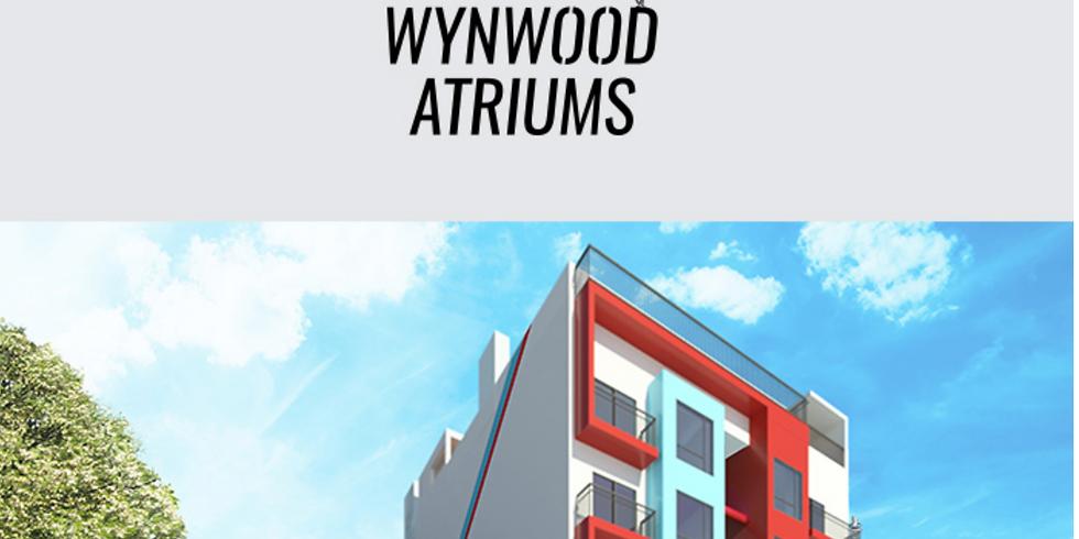 11am.  Project Presentation:  Wynwood Atriums