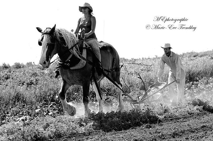 L'agriculture, un style de vie