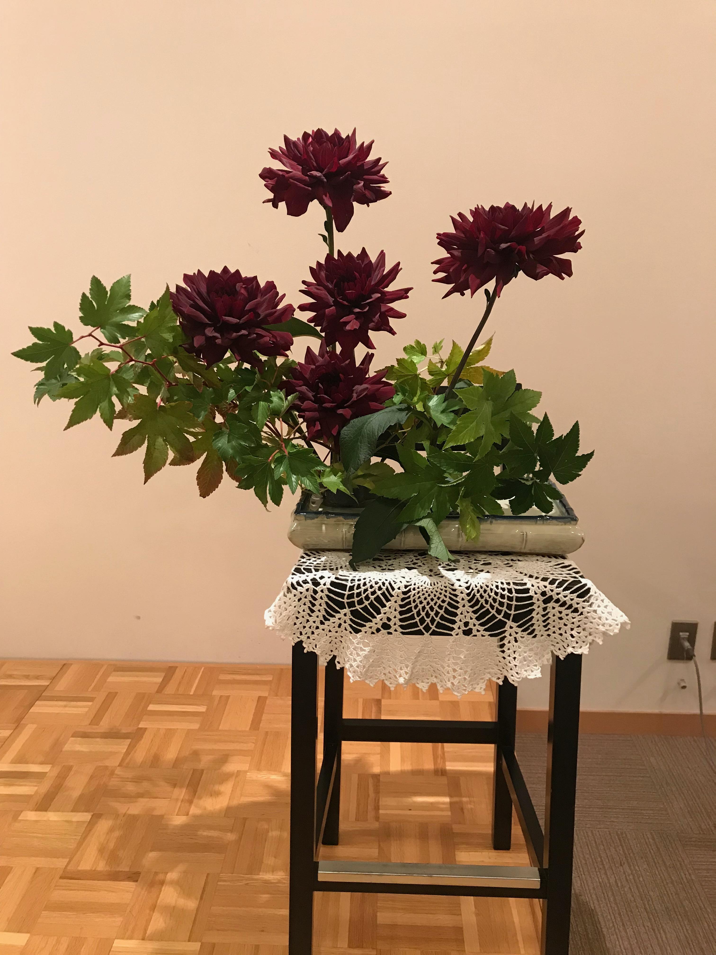 2018/10/14、ダリアとヤマブドウ