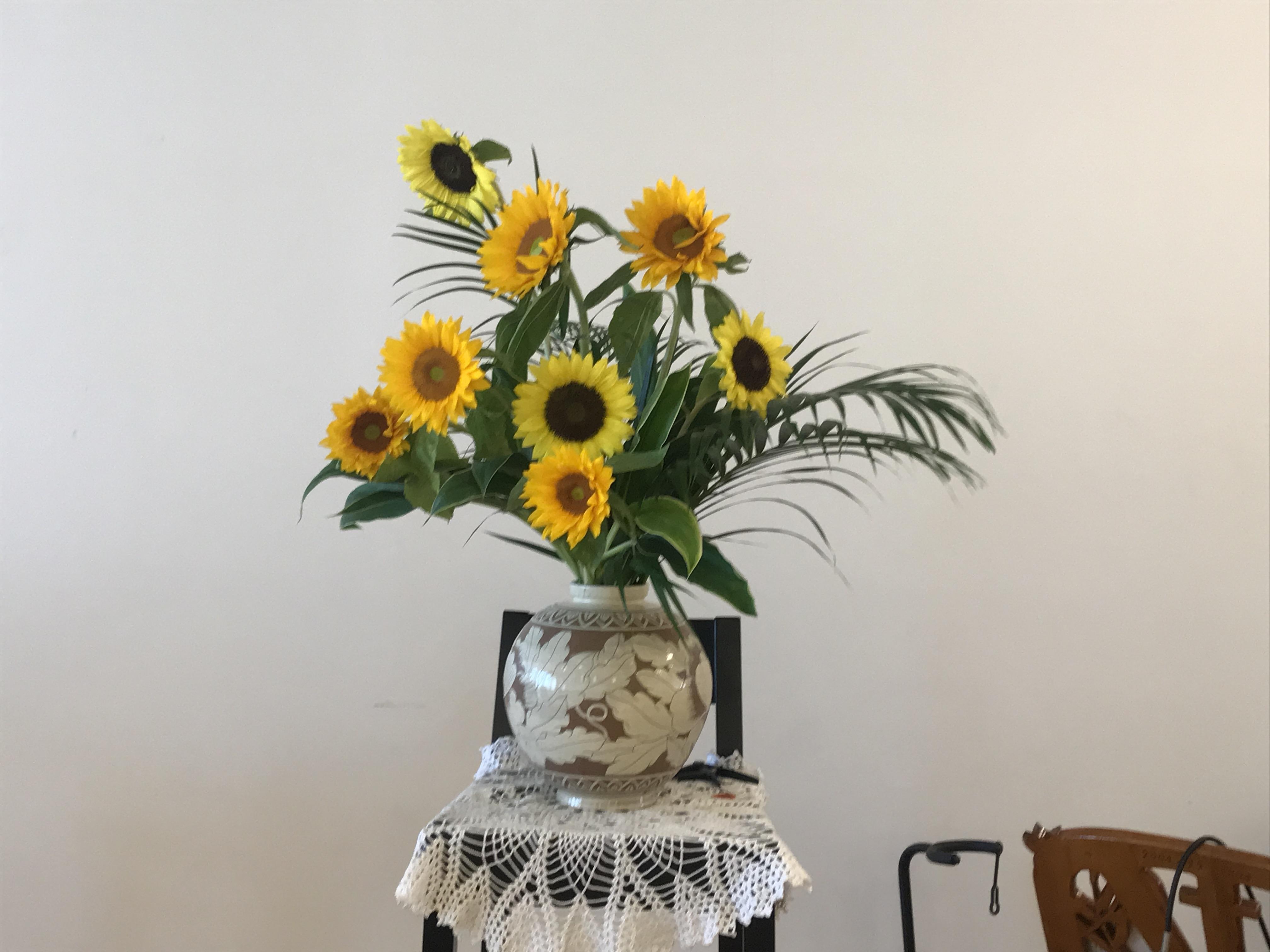 2018/8/5、ヒマワリ