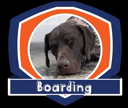 boarding badge.png