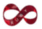 LOGO donate RUBY.png