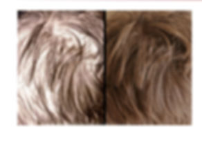 Before After Hair Page.jpg