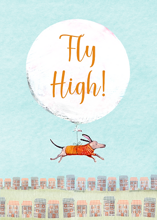 FLYHIGH KW-01