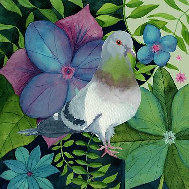 Pigeon Garden KW-02