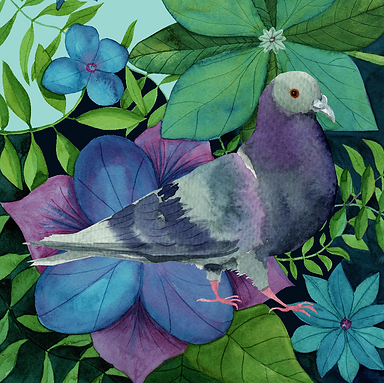 Pigeon Garden KW-01