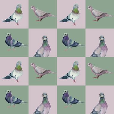 Pigeon Pattern KW-01