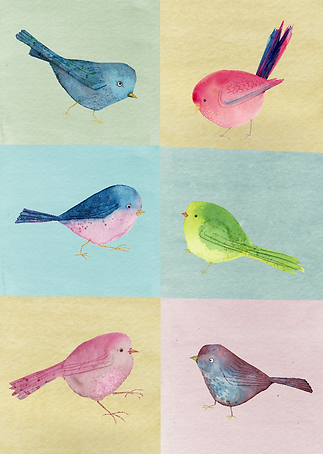 Bird Day KW-01