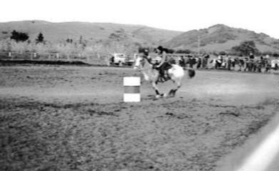 barrel-racing
