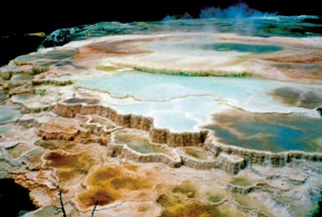 MAMMOTH_HOT_SPRINGS_-_EXTREMOPHILES