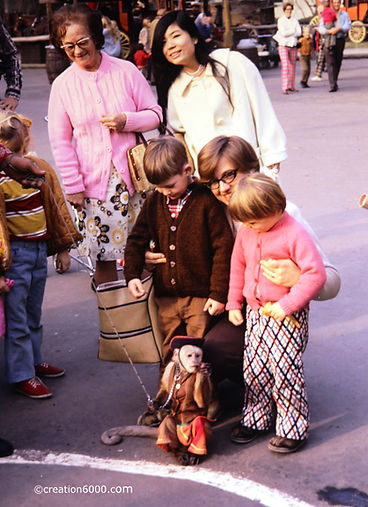 Monkey collecting money at Knotts Berry Farm 1971 on creation6000.com
