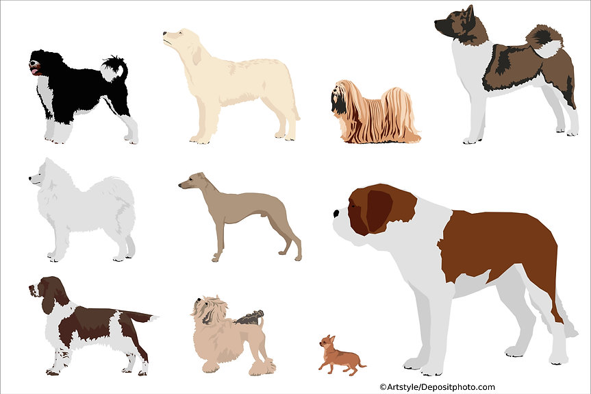 Varieties of dogs