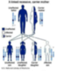 X-linked recessive, carrier mother