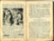 War-time German Bible with reference to Jews blotted out on creation6000.com