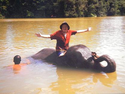 2015 Elephant in Thailand - Copy.jpg