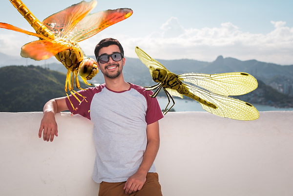 guy dragonflies.png
