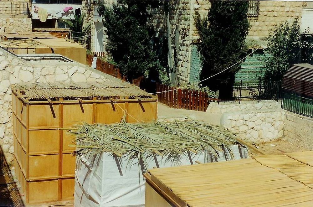 Roof top booths in Jerusalem on creation6000.com