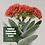 """Thumbnail: Crassula Falcata """"Propeller Plant"""""""